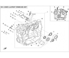 X550: E03 RIGHT CRANKCASE ASSY